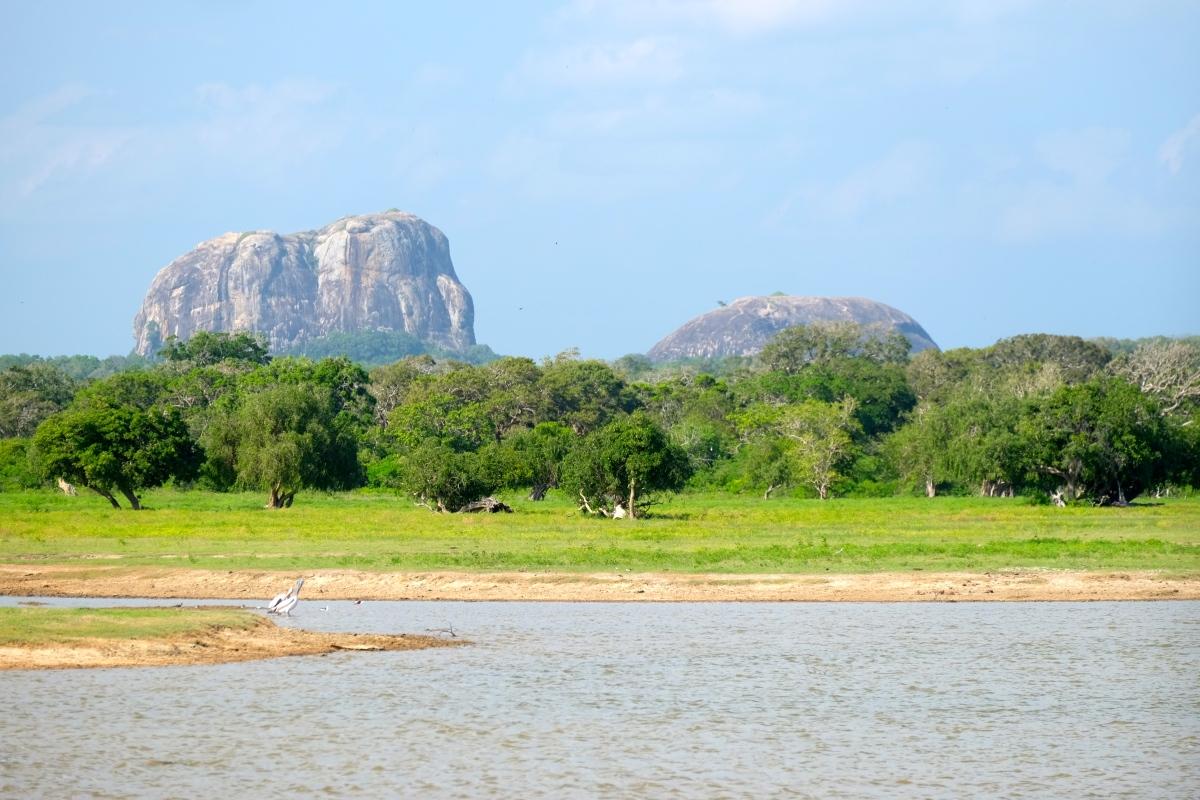 Park Narodowy Yala – SriLanka